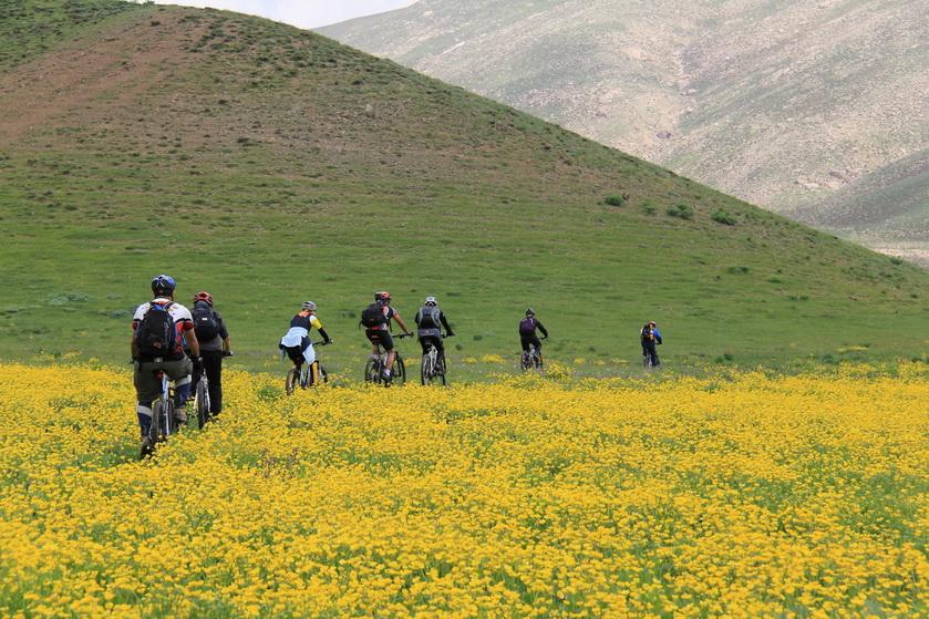 برنامه کارگروه دوچرخه کوهستان